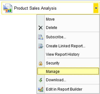 SQL Server Performance Managing the Report Content Using